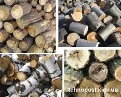 Теплотворность дров для разных пород дерева