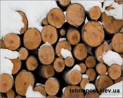 Влажность древесины | Дрова