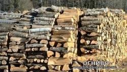 Теплотворность дров, теплотворная способность дров