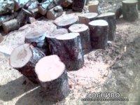 Насколько хуже сырые дрова? Этот вопрос волнует многих, если не всех...